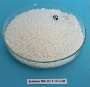 China Nitrate Sodium Nitrate Granular on sale