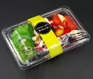 China Plastic Salad Container on sale