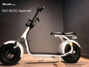 China Cool Electric Moped Scooter on sale