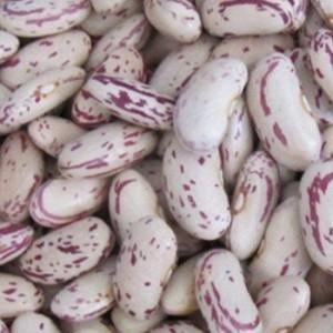 China Sugar Beans on sale