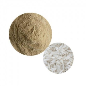 China Organic Plant Protein Organic Rice Protein on sale