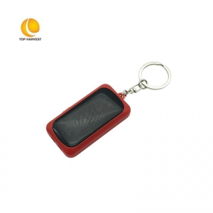 China LED light Keychain with Custom LOGO TH-G134 on sale