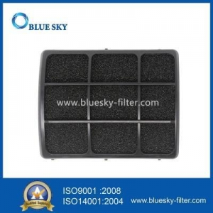 China Washable Actived Carbon HEPA Filter For Dirt Devil F111 Vacuums on sale