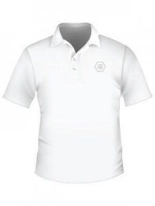 China Men's Breathable raglan Sleeves Polo Shirt on sale