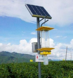 China Solar Insect Killer Lamp on sale