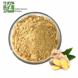 China Factory Supplier Pure Ginger Root Powder Gingerol on sale