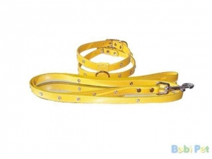 China Dog leashes and collars SKU: BLC08020 on sale