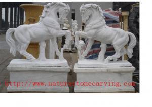 China ND-013 Animal on sale