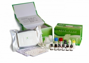 China Bird Flu H9N1 Antibody ELISA Test Kit on sale