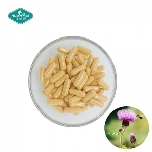 China Herbal Supplements Milk Thistle Extract Capsules for Liver Function on sale