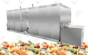 China Commercial IQF Fruit Vegetables Food Freezer Machine on sale