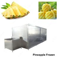China Stainless Steel High Quilty Pineapple Frozen Machinery/Freezer Machine Price In India on sale