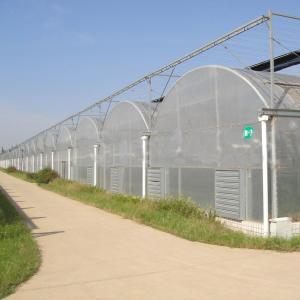 China Vegetable/flower growing multi-span poly film covering greenhouse for sale on sale
