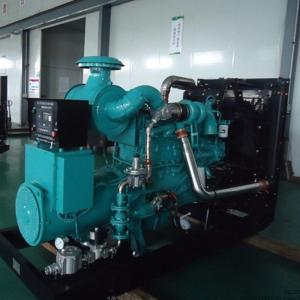 China Electricity LNG CNG 250kw natural gas generator genset power Synchronous grid water cooling on sale
