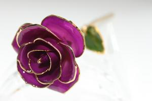 China Handcrafted Gold plated Rose 24k Gold Dipped Rose - Mothers Day Gift on sale