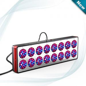 China 600W Full spectrum LED grow light from Cidly use for 1000W HPS grow tent system on sale
