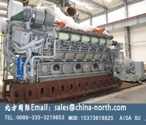 China MTU  MAN natural gas engine,gas generator set on sale