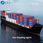 Cargo Duty Included DDP Sea Shipping From China To Canada