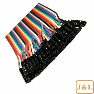 China 2x 40 Conductor (80pcs) Male to Female Jumper Wire 20CM; 40P Wires Ribbon Cable on sale