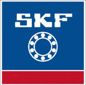 China SKF6002-2RS supplier