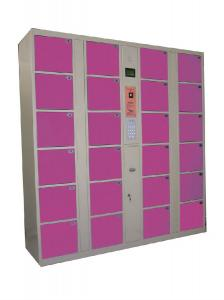 China Best selling IC Card/RFID electronic locker used for gym on sale