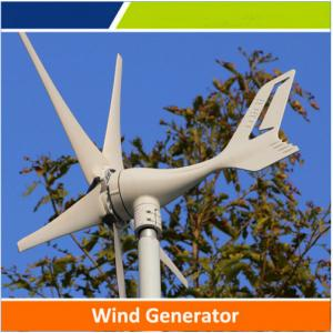 China High quality 50w to 1kw wind turbine with cheap price for hot sale on sale