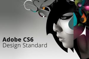 China Adobe CS6 Design Standard for Windows 7/8/8.1/10 Full-language version on sale