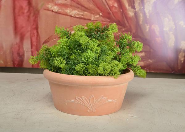 Plastic Small Tabletop Herb Planter