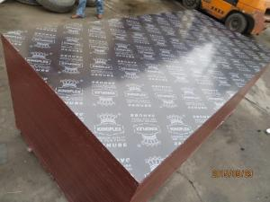 China KINGPLEX BRAND FILM FACED PLYWOOD, COMBI CORE, WBP PHENOLIC GLUE, IMPORTED BROWN FILM on sale