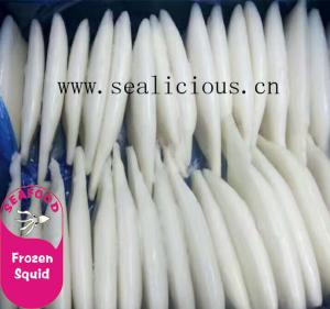 China frozen cleaned squid tube todarodes pacificus u5 u7 u10 on sale