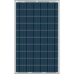 China 230W Poly-Crystalline Solar Module on sale