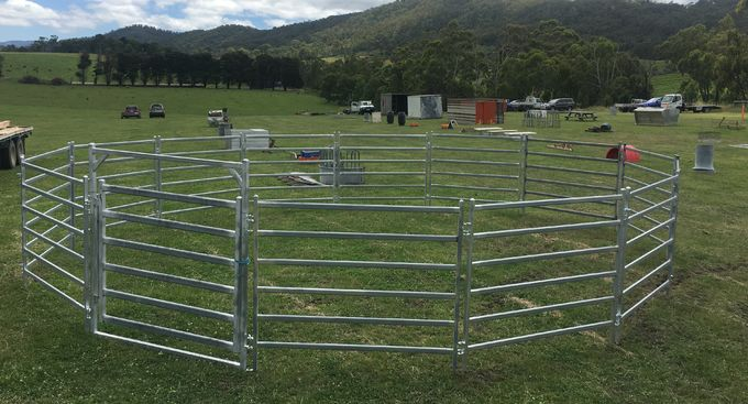 1 x 2M Heavy Duty Sheep Goat Pig Panel Cattle Yard Fencing 6 Oval 2mm thick M