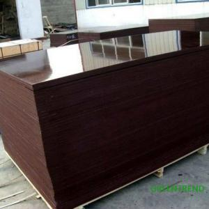 China 15MM Phenolic  Glue Brown Film Faced plywood from Greentrend on sale