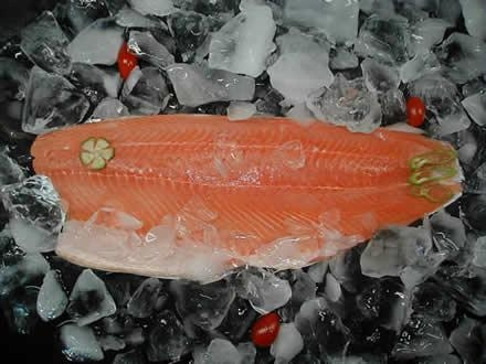 China Chum Salmon Products Chum Salmon Fillets