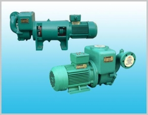 China Marine series CWX series self-priming vortex pump on sale