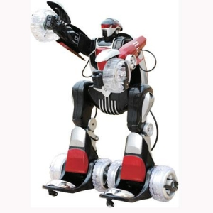China RC ROBOT on sale