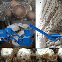 China Mushroom cultivation machine for oyster farm on sale