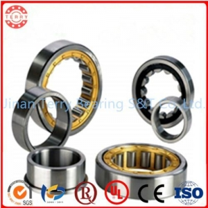China Full complement cylindrical roller bearings SL18 3016 on sale