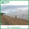 China PC Multi-span Greenhouse Poly film agrilcultural greenhouses for sale on sale