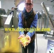 China DP76 new condition and good grade cheetos/ kurkure processing machine/making plant in china on sale