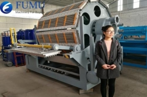 China Pulp molding machine on sale