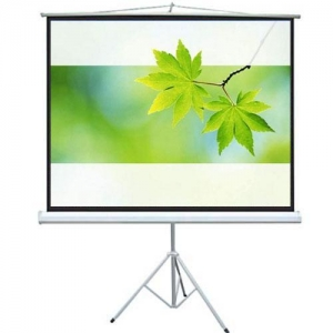 China portable white drop down video screen on sale