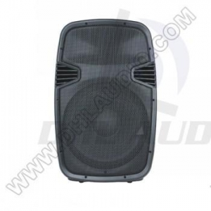 China Speaker Cabinets Molded Speaker Cabinets DHS-12AU on sale