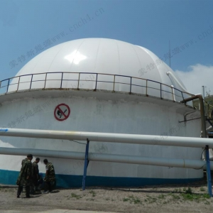 China Roof Top Dual Membrane Biogas Storage Tanks on sale