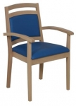 Healthcare and education Akina low armchair